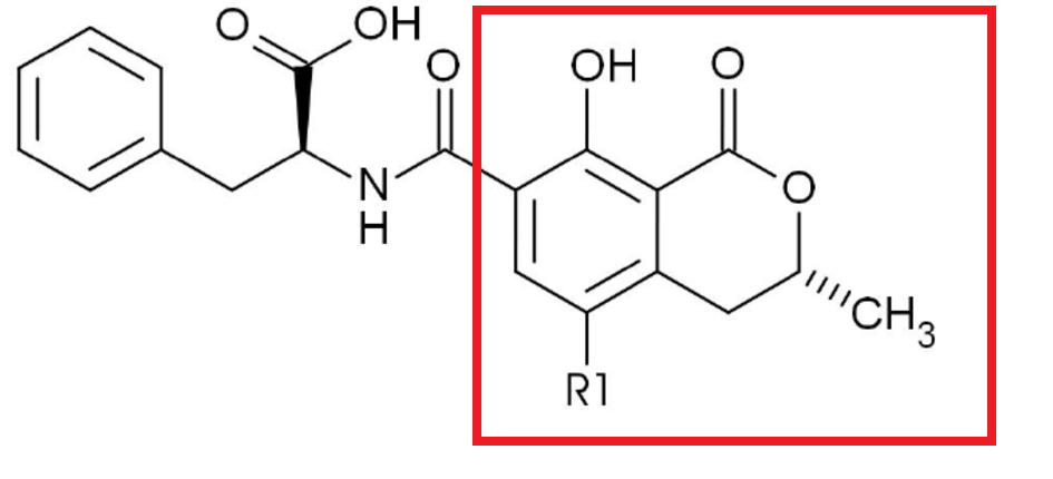 Chemical-structures-of-ochratoxin-A-and-B-Ochratoxin-A-R1-Cl-ochratoxin-B-R1-H